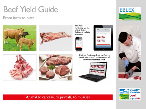 Beef Yield Guide