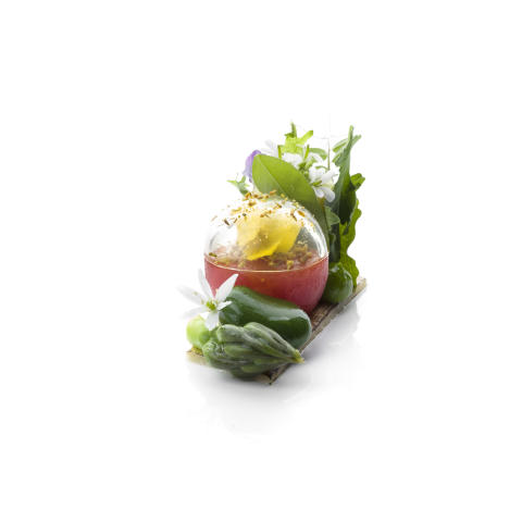 Bocuse-d'Or_2018_Garnityr_SG_Summer-Garden