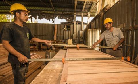 Tio fallstudier av företag med samfällighetsskogsbruk