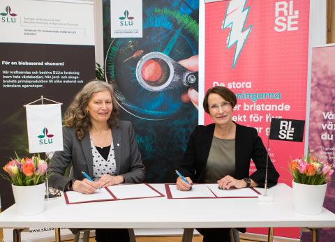 SLU och RISE tecknar nytt samarbetsavtal