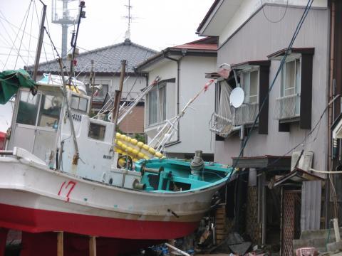 Soma i slutet av maj 2011 - bild hämtad ur boken Fukushimas färger av Elin Lindqvist