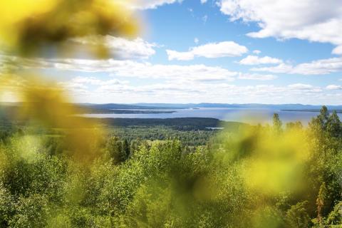 Dalarna får Sveriges första nationella geopark