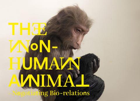 The Non-Human Animal - Negotiating Bio-relations - exhibition at Uppsala Art Museum