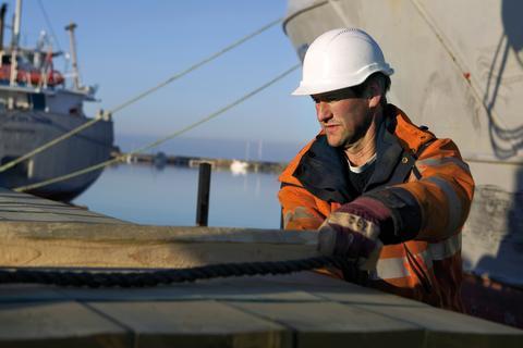 Hantering av sågade trävaror för export i Varbergs hamn