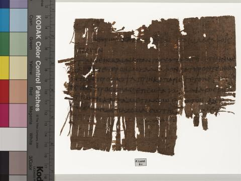 Papyrus i databas öppnar dörren till antiken