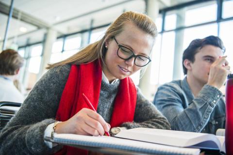 Hva kjennetegner en god bacheloroppgave?