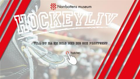 """Zenton levererar fotostation till succéutställningen """"Hockeyliv"""" på Norrbottens museum i Luleå."""