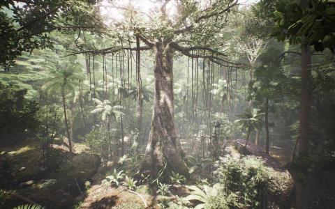 Sæt dig i træernes sted: Tag på Kunsthal Charlottenborg og oplev, hvordan det er at være et træ midt i regnskoven.