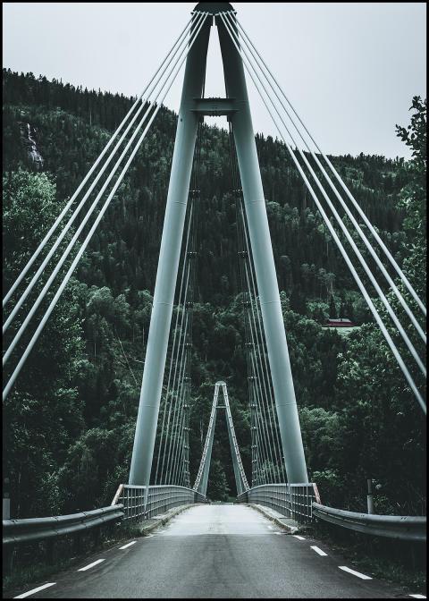 Bridge tavla