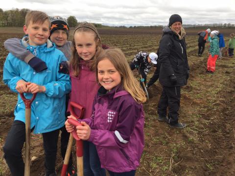 Allemansrätten i fokus när 1500 elever planterar träd