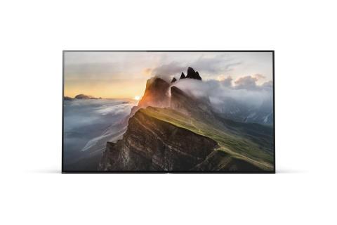 Sony BRAVIA A1 OLED 6