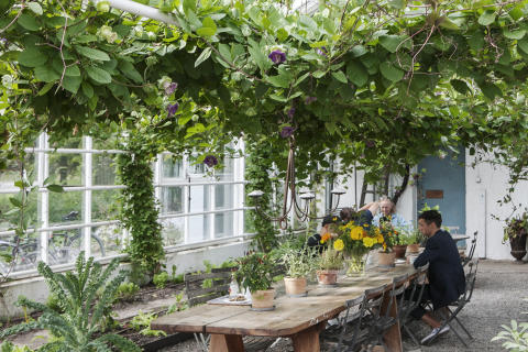Skördefest på rosendals trädgård