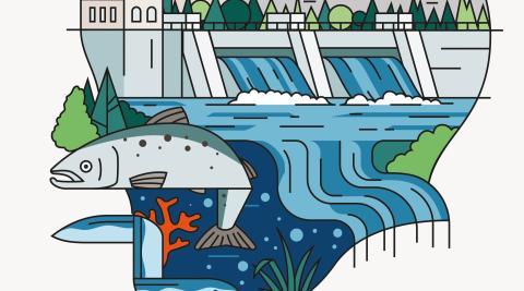 Den svenska vattenkraften ställer om för ett hållbart samhälle
