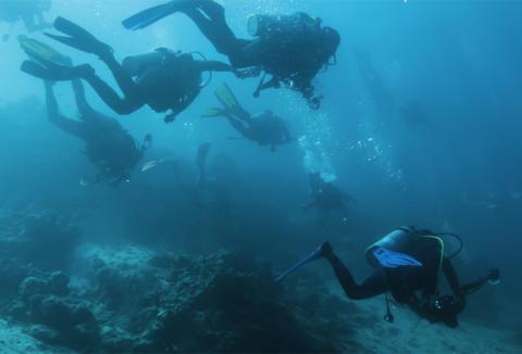 En undervattensvärld för hela familjen