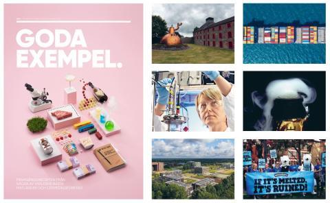 Goda exempel: så kan Sverige bli ett av världens främsta livsmedelsländer