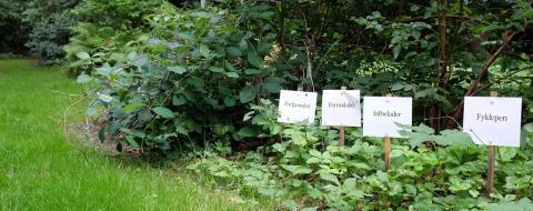 Reservat for truede ord2.Nivaagaards Malerisamling