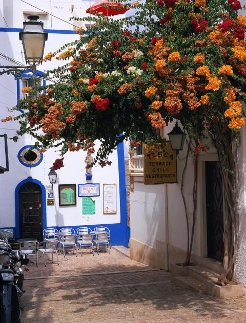 Albufeira, Praia da Rocha och Vilamoura - nya resmål hos Ving