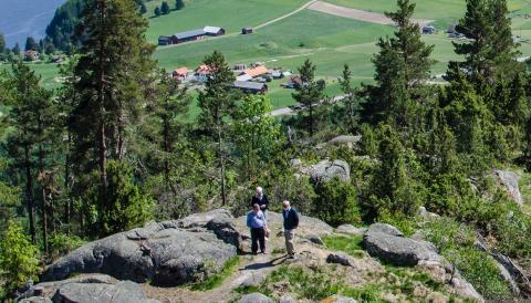Sunne och Telia i unikt projekt för att bygga Sveriges första digitalt framtidssäkrade kommun