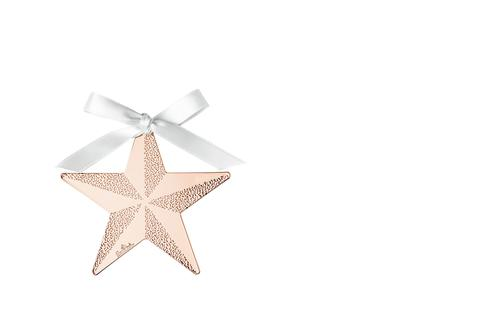 R_Silver_Collection_Christmas_Rose_Gold_Stern_8_cm