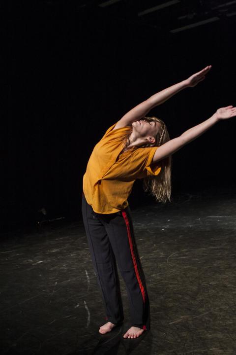 Liza Tegel, Vinnaren av Skapa Dans Riksfinal 2016