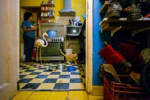 © Jasper Doest, Netherlands, 1st Place, Professional competition, Wildlife , 2019 Sony World Photography Awards (1