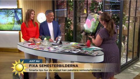Fixa med sommarbilderna  - Åsa Wallenrud tipsar i TV4 nyhetsmorgon!