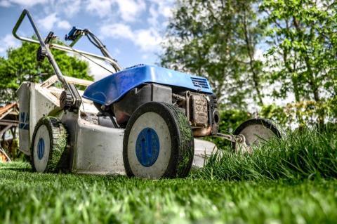 Fel skor vid gräsklippningen skadar tusentals