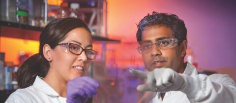 Nya resultat inom immunonkologi presenteras på årets ASCO-kongress: Immuncheckpointhämmaren nivolumab, som ensam behandling eller i kombination med Yervoy (ipilimumab), visar antitumöraktivitet i studier på njurcancer