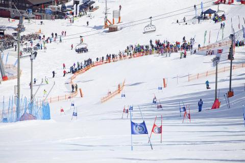 NM alpint Hemsedal 24-30 mars 2014