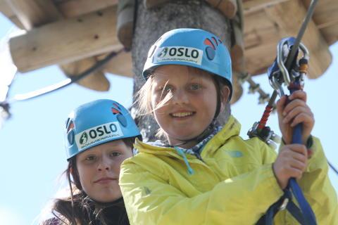 La barna leke i skogen og jobb med god samvittighet.