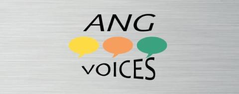 ANG VOICES - #Schwarzarbeit