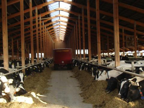 Nachhaltigkeit auf Milcherzeugerebene – weiter Thema des Jahres!