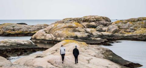 Vi välkomnar ditt projekt – som sätter kulturen i centrum och skapar framtidens brobyggare i Östersjöområdet!