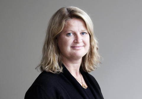 Birgitta Palmér, Presservice