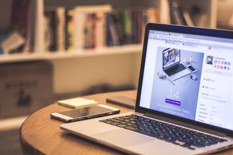 Web- und Telefonkonferenz zu Steiner & Company Multi Asset Portfolio