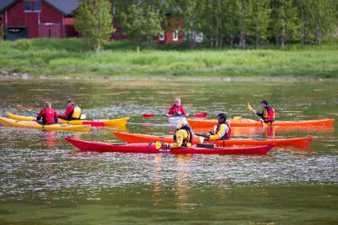 Kayak - Arctivity