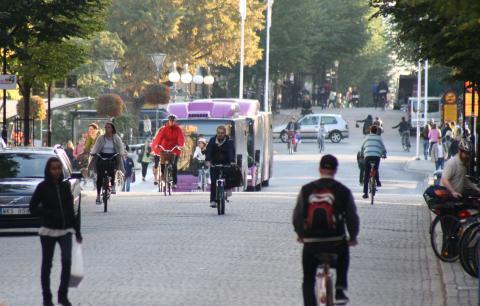 Stor studie visar hur städer kan få fler att gå