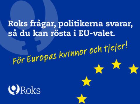 Roks frågar ut parlamentariker inför EU-valet