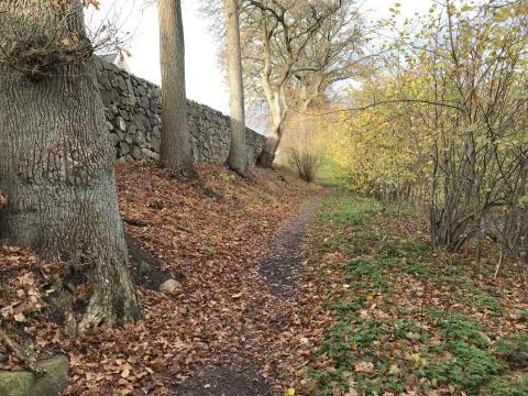 Den gamla skjutvallen i Skytteskogen hägnas in