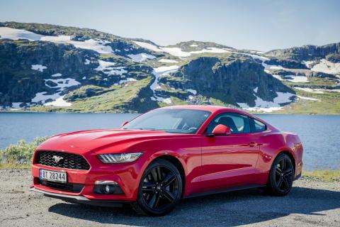 Mustang Norway