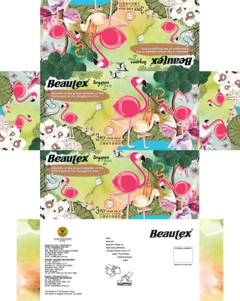Packaging Design - BEAUTEX SINGAPORE