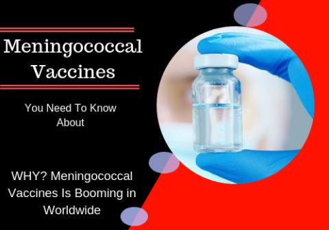 Meningococcal Vaccines Market Potential Growth, Share, Demand And Analysis Of Key Players - Analysis Forecasts To 2027