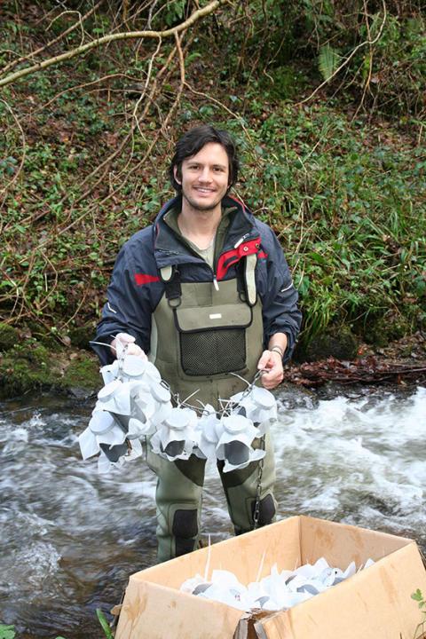 Utrotning av insekter påverkar vattendrag