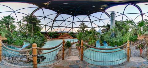 Google 360 Subtropical Swimming Paradise
