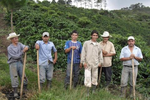 SPP investerar i omställning till hållbart jordbruk i Latinamerika