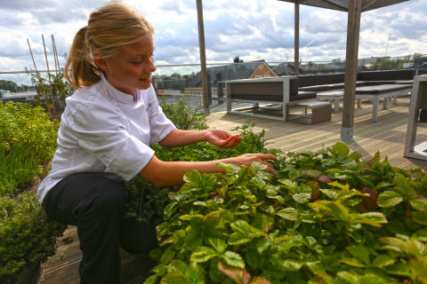 Växjö är Årets Matlandethuvudstad 2015