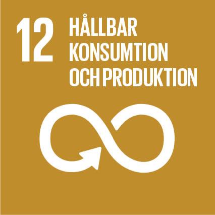 12 hållbar konsumtion och produktion