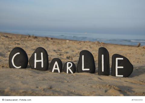 Kolumne: Was Charlie mir bedeutet // Ein Bekennerbrief von NIMIRUM-Inhaber Dr. Christophe Fricker