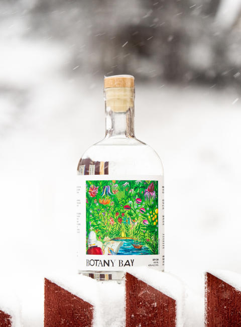 Botany Bay Dala Sweden Snow