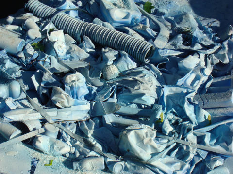 Super Sargasso havet – Gemensamma nämnare